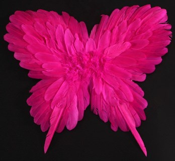 Крылья детские из перьев 40*50см. Ярко-розовые