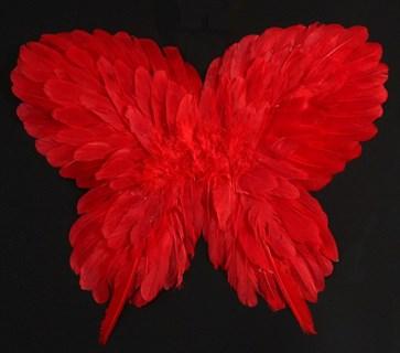 Крылья детские из перьев 40*50см. Красные
